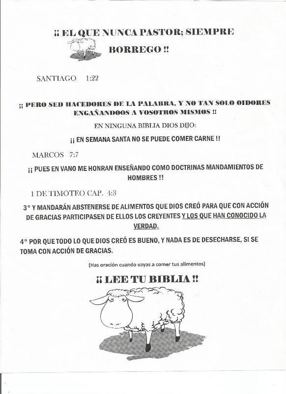 BORREGOS (5-abr-15)