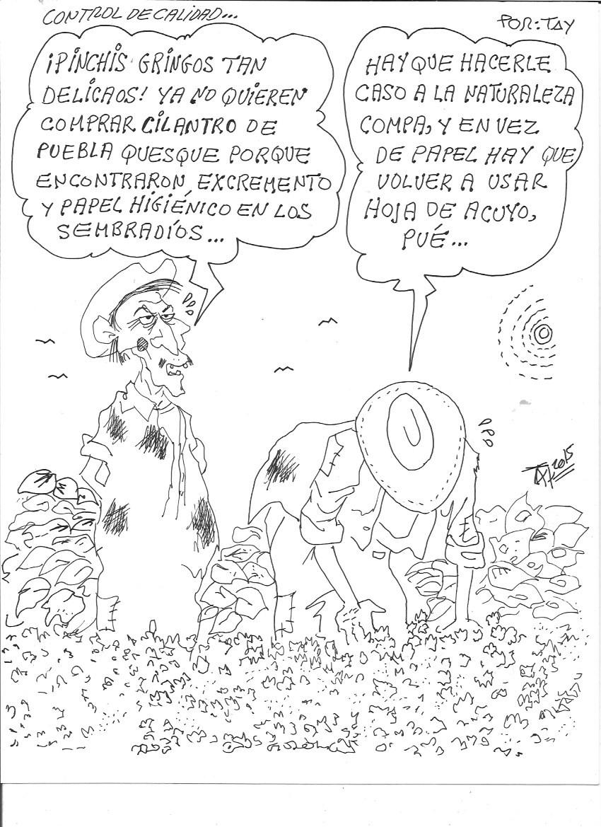 CONTROL DE CALIDAD (29-jul-15) Tay